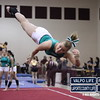 VHS-GYMNASTICS-@-SECTIONALS-2013_jb (14)