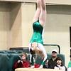 VHS_Gymnastics_vs_Crown_Point_1-3-2013 (24)