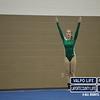 LaPorte_Valpo_Gymnastics_Meet_2013 (48)