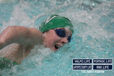 VHS_Swim_Dive_2012_vs_Hobart_2012 (13)