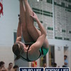 VHS_Swim_Dive_2012_vs_Hobart_2012 (123)