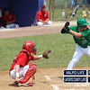 Baseball-Sectional-Championship-2012 111