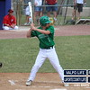 Baseball-Sectional-Championship-2012 123