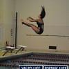 PHS v HHS Girls Swimming and Diving 11-21-13 (20)