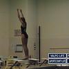 PHS v HHS Girls Swimming and Diving 11-21-13 (8)