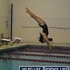 PHS v HHS Girls Swimming and Diving 11-21-13 (15)