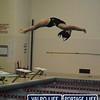 PHS v HHS Girls Swimming and Diving 11-21-13 (14)