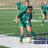 vhs-girls-jv-soccer-chesterton-2013 (2)