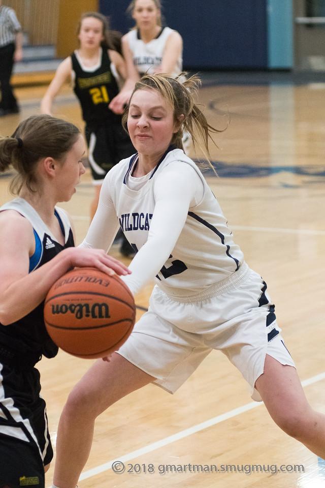 2018 Girls JV Basketball vs. Putnam