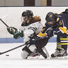 Billerica-Chelmsford co-op girls hockey vs Andover. Billerica-Chelmsford's Clare Conway (19), left, and Andover's Hannah Rowe (16). (SUN/Julia Malakie)