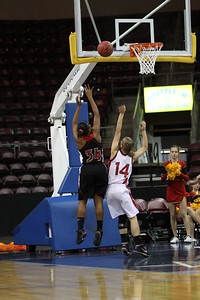 Williams Field Black Hawks Girls Basketball 2010