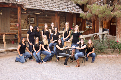 Gilbert High School 2010 Volleyball Team. GHS Tigers.