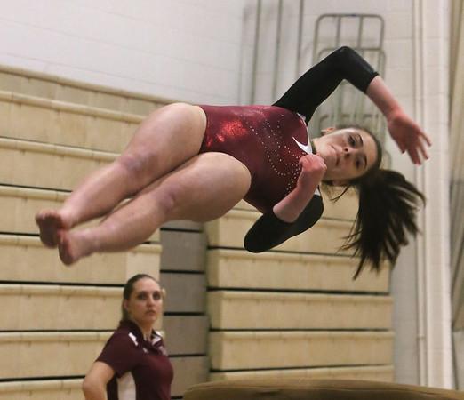 Westford Groton-Dunstable gymnastics 010818