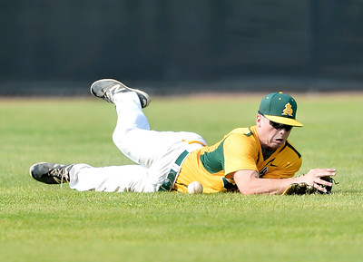 Outfielder Mark Harris of Amherst dives for an RBI hit by Anthony Wayne in the third inning. DAVID RICHARD / CHRONICLE