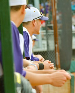 Avon's Adam Novak watches intently as a teammate bats Thursday in the Division 1 District Final. JESSE GRABOWSKI / CHRONICLE