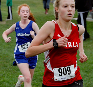 Vermilion cross country