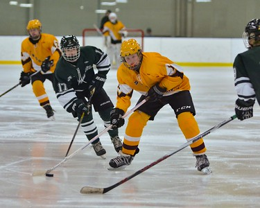 Tommy Kacmarcik moves down the ice against Strongsville on Sunday. JESSE GRABOWSKI / CHRONICLE
