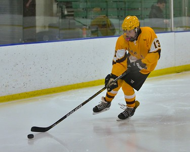 Avon Lake's Tim Lubertozzi skates with the puck during a game against Strongsville. JESSE GRABOWSKI / CHRONICLE