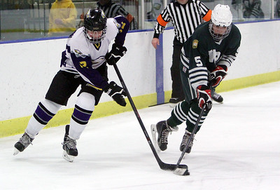 ANNA NORRIS/CHRONICLE Avon's Joe Goetz and Western Reserve Academy's Leo Holland battle for control of the puck.
