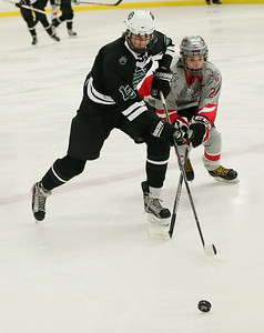 EC's Paul Demer battles Parma's Coile Blagg for the puck.  photo by Ray Riedel