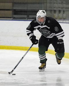 Elyria Catholic's David Kukucka moves down the ice Monday, Feb. 8.  STEVE MANHEIM/CHRONICLE
