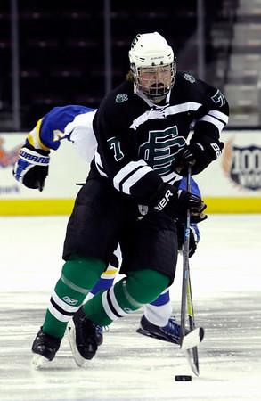 High School Hockey: Elyria Catholic downs Brooklyn