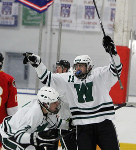Westlake's Alex Miller throws his hands up in celebration after scoring a goal against Brecksville. ANNA NORRIS/CHRONICLE