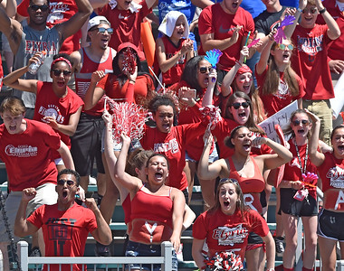 Elyria students cheer as the winning run scores for the Pioneers. DAVID RICHARD / CHRONICLE
