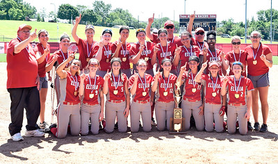 The Elyria High softball team poses for a picture after winning the Division I state championship in Akron on Saturday. DAVID RICHARD / CHRONICLE