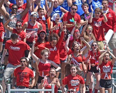 Students cheer on the Elyria High softball team at the Division I state finals Saturday in Akron. DAVID RICHARD / CHRONICLE
