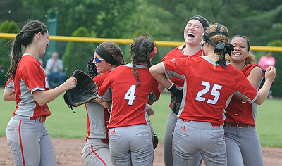 Elyria celebrates its win over Whitmer to advance to the state softball tournament on May 27.  STEVE MANHEIM / CHRONICLE
