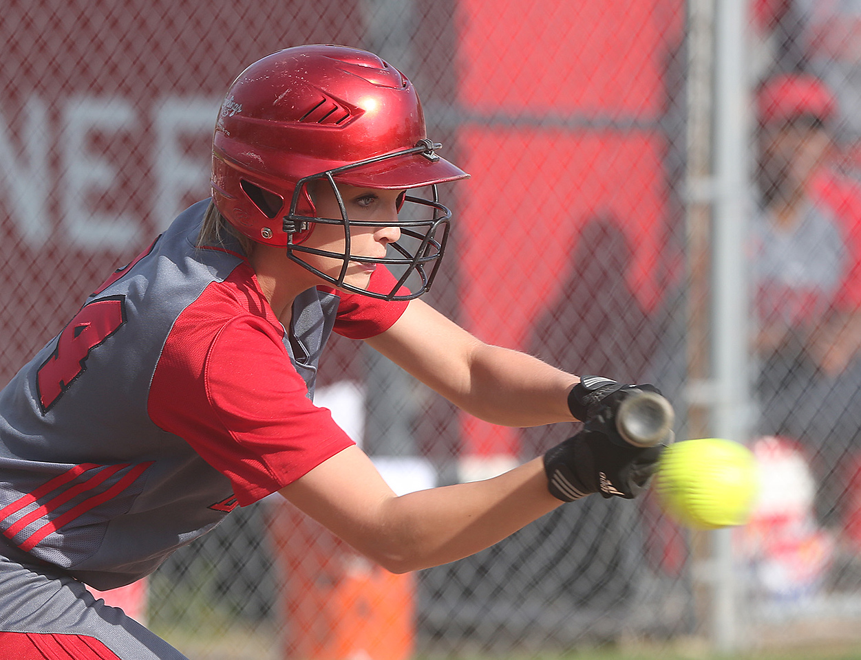 Elyria High's #24 Anna Daly puts down a sacrifice bunt to move the runner to second during the game at Elyria's field against Brunswick.