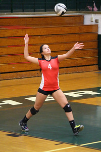 Brookside's Natalee Halkiadakis serves against Elyria Catholic. CHRISTY LEGEZA/CHRONICLE