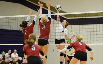 Volleyball Vermillion Tri Match