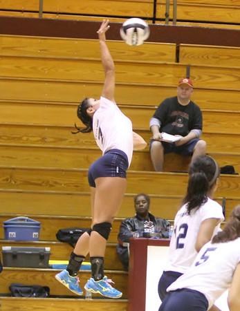 Volleyball Lorain Maple Heights