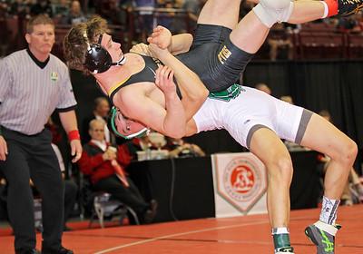 2017 state wrestling tournament