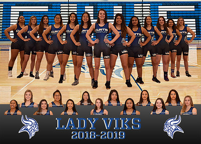 lady viks bleachers 5x7