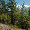 Stelly Trail 07 pan