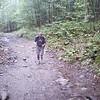 Hiker # Beginning (2)