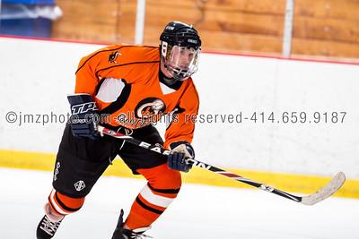 recHockey Guyder WCHL_20130426-74