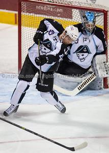 AHL_Admirals v Grand Rapids_20150227-14