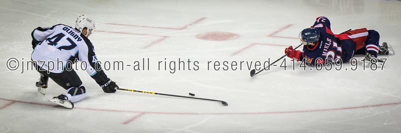 AHL_Admirals v Grand Rapids_20150227-138