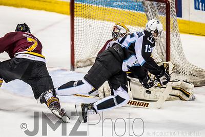 Admirals v Wolves AHL_20130416-187