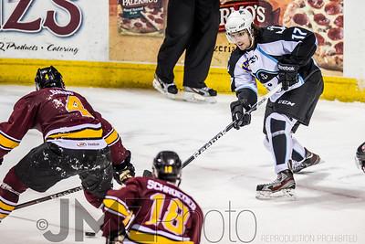 Admirals v Wolves AHL_20130416-166
