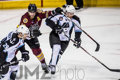 Admirals v Wolves AHL_20130416-138