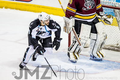 Admirals v Wolves AHL_20130416-173