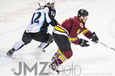 Admirals v Wolves AHL_20130416-56