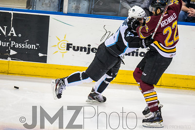 Admirals v Wolves AHL_20130416-68