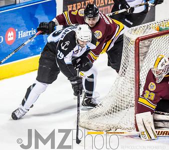 Admirals v Wolves AHL_20130416-47