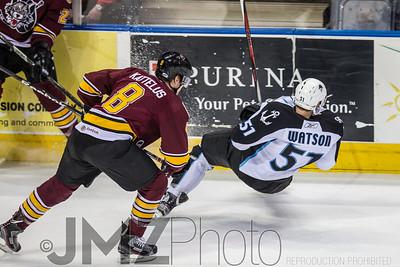 Admirals v Wolves AHL_20130416-26